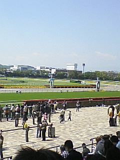 5月1日  今日は東京競馬場